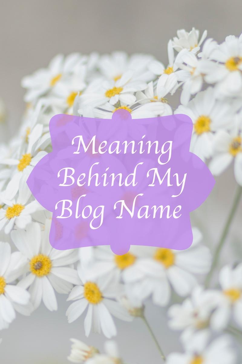 blogname3